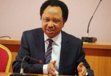 Senate Presidency: APC Senators May Defy Zoning Arrangement, Says Sen. Sani