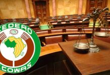 ECOWAS To Convene Emergency Summit Over Military Coup In Mali