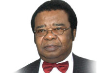 The Said And Unsaid Intention Of Asiwaju Tinubu, By Bolaji Akinyemi