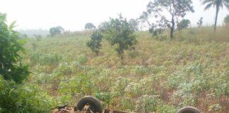 10 Feared Dead, Two Injured In Ebonyi Auto Crash