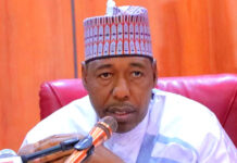 Borno Governor, Zulum Sacks Health Commissioner