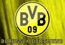 Breaking! Borussia Dortmund Confirm New Manager