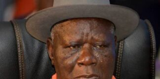 Insecurity Clark Fingers Northern Elites, Faults Amnesty For Bandits
