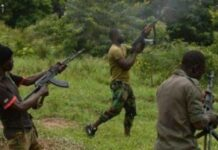 Kagara Four killed, Chief Imam, Others Abducted In Fresh Attack
