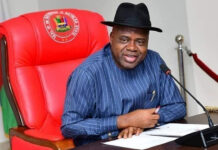 Diri Bans Deforestation Activities In Bayelsa