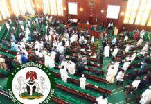 Reps Probe Export Of Human Penises From Nigeria