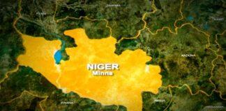 Niger Records Outbreak of Avian Flu