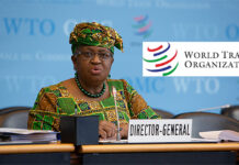 WTO to assist Nigerian women entrepreneurs – DG