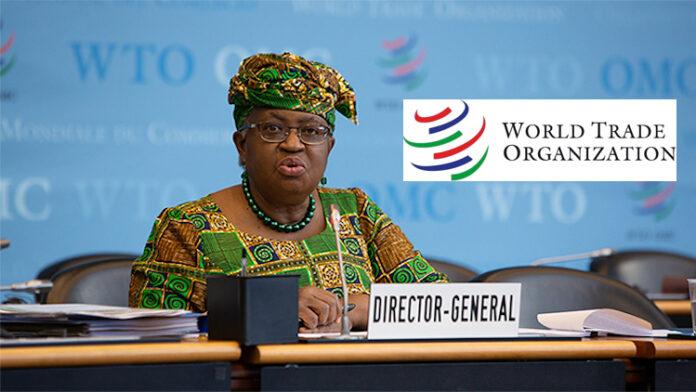 WTO to assist Nigerian women entrepreneurs – DG