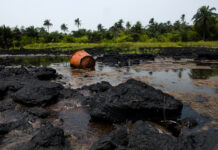 Shell's Pipeline Spills 213 Barrels of Oil in Bayelsa