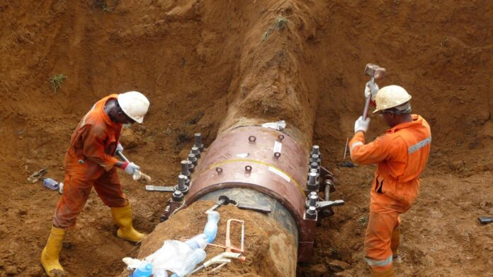 Shell Reports 51 Leaks In Niger Delta This Year
