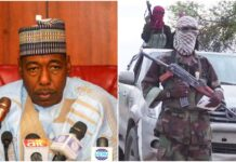Zulum Poverty, illiteracy Responsible For Insurgency In Nigeria