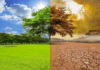 Climate Change Greater Threat To Nigeria Than Covid-19 – UN
