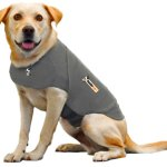 Review on the ThunderShirt