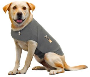dog thundershirt review