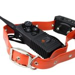 TaoTronics Dog Training Collar: TT-PT10 Dog Training Collar Review