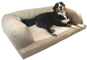 Orthopedic-foam dog bed couch
