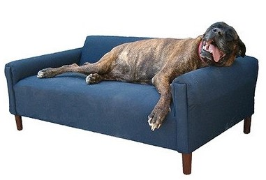 Biomedic Dog Couch (2)