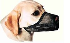 dog muzzles