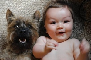friendship-as-told-by-babies-and-their-dogs-1-29392-1378505807-2_big
