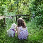 5 Universal Responsibilities of Dog Owners