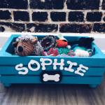 8 Dog Toy Box Ideas That You Will Love