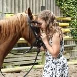 Animal Familiars Empowerment