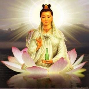 blessings of the goddess quan yin