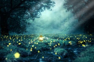 Elven Energy Empowerment Lightwork