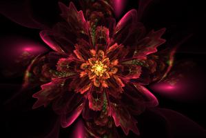 Shamballa Multidimensional Healing Levels 1-4