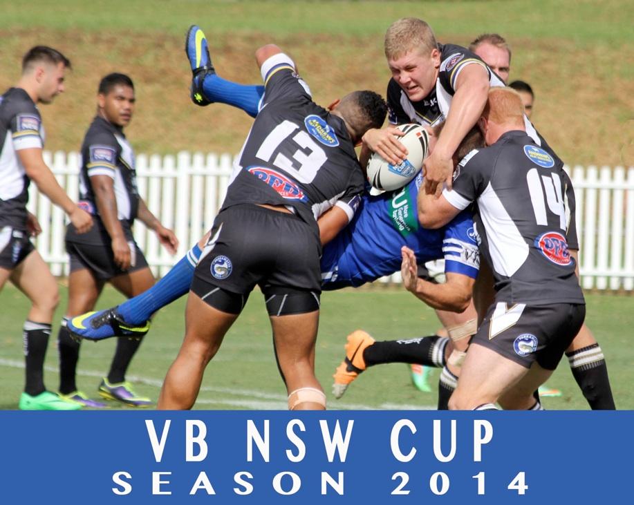 2014 NSWRL Season