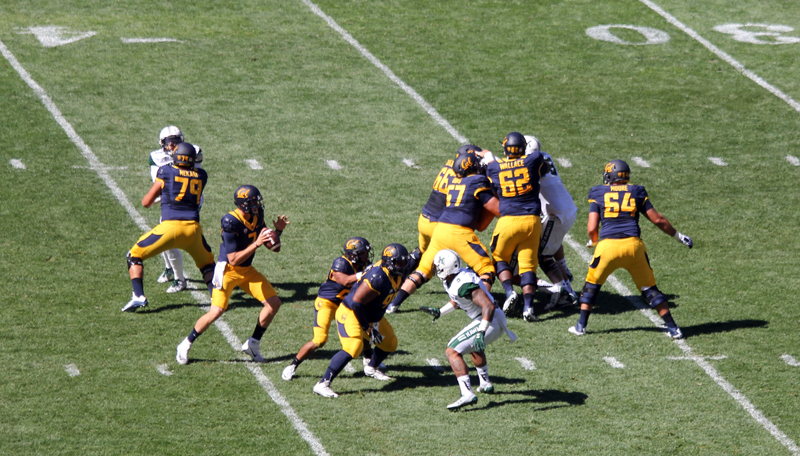 Cal QB Dylan Webb was well protected by his offensive lineman. Photo: Jodie Newell