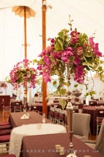 adriana--spencers-wedding_16288751443_o
