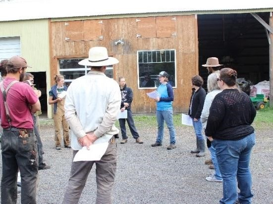 A Young Farmer's Perspective: The Local Food Safety Collaborative's Need Assessment Reports