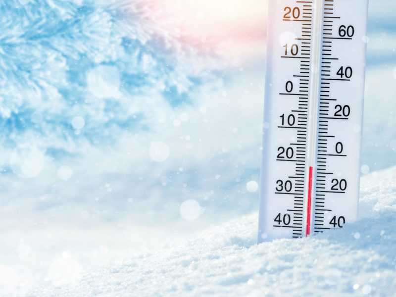 Cold Temps, Hot Food Safety Projects