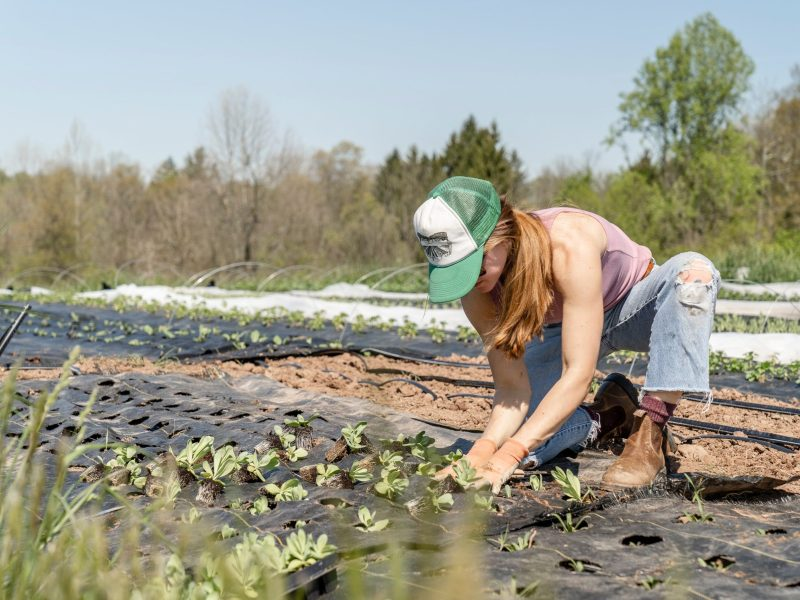 Additional Aid Will Help Farmers Cope with Lingering Effects of Pandemic, Farmers Union Says