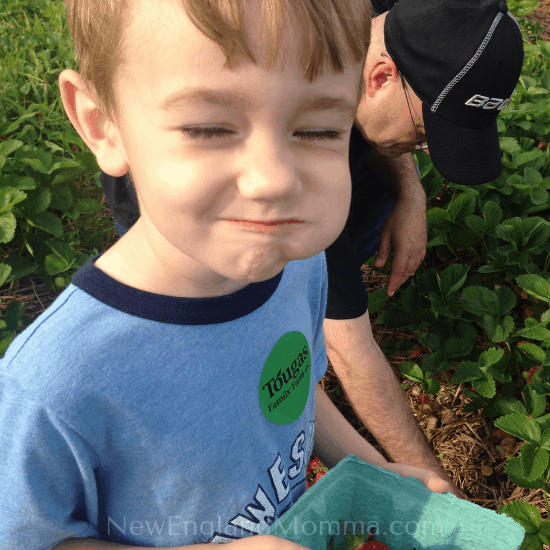 boy with a mouthful of strawberry