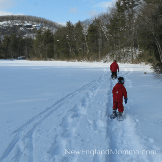 The winter may seem long but it won't last! Here is my 7 Must-Do Kid-Required Activities to do before the snow melts! Easy & fun to do!