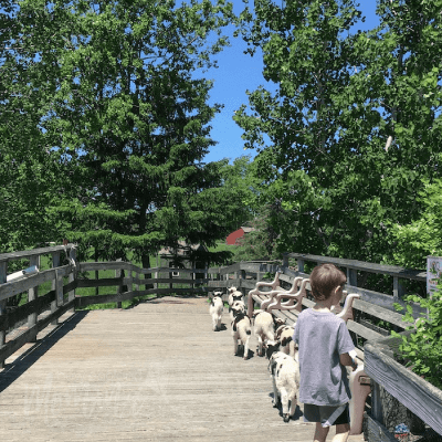 Things to Do in Central Massachusetts