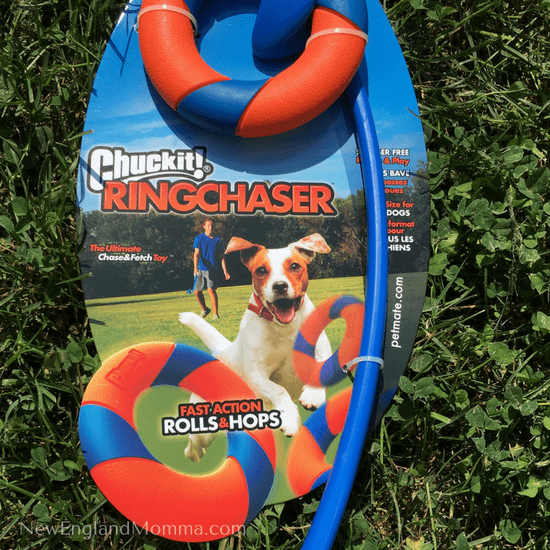 ChuckIt! has such a big variety of fun dog toys!