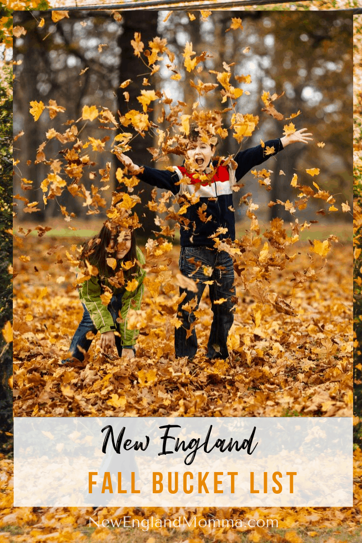 two boys throwing autumn leaves in the air and having fun