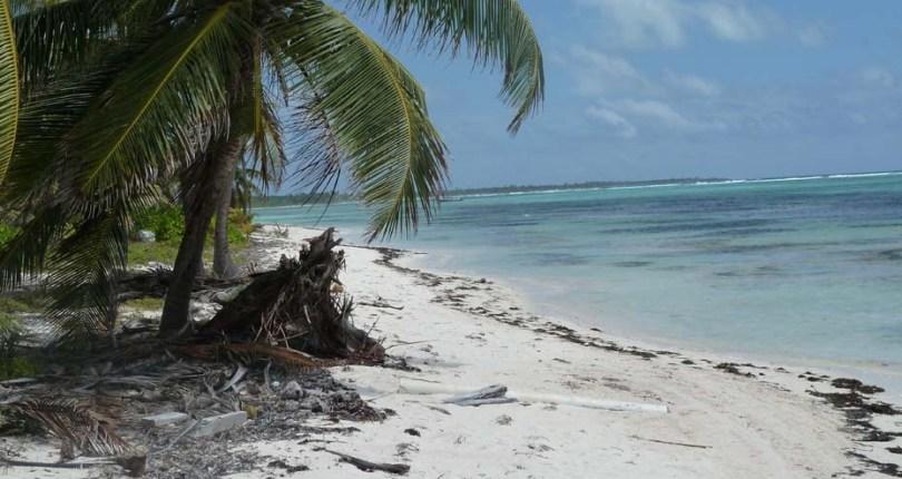 Basil Jones Beachfront Land for Sale