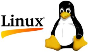 Linux Logo - Embedded Computers and Linux