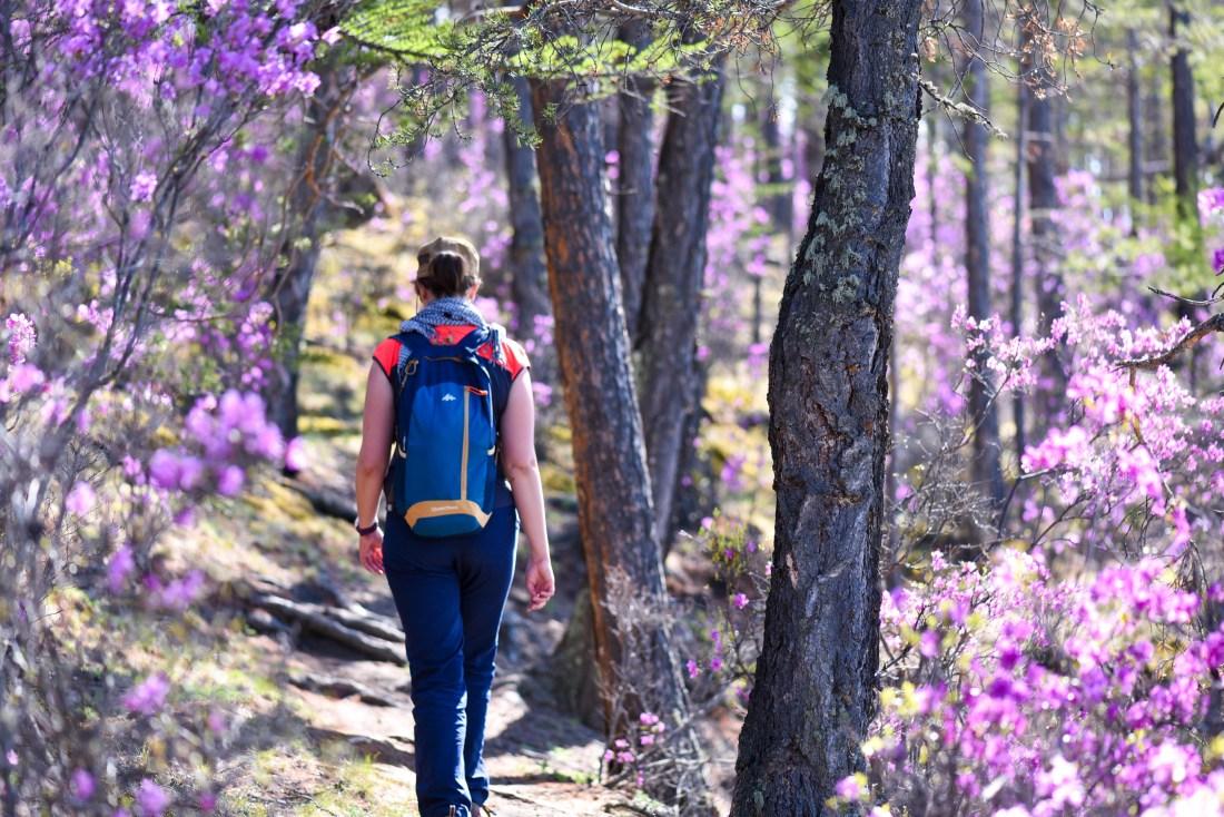 Dans la forêt près de Khoujir