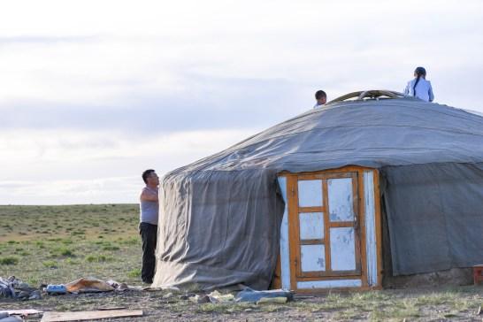 Construction d'une yourte sur le camp.