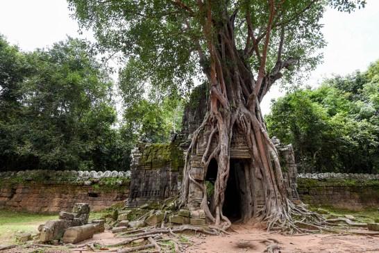 Ruines à Angkor, sans touriste @neweyes
