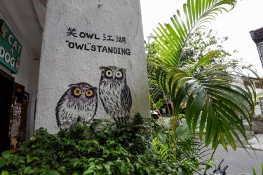 Art de rue à trouver dans George Town @neweyes