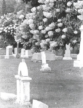 a newfield grave