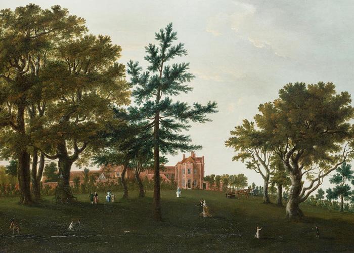 history of bolderwood