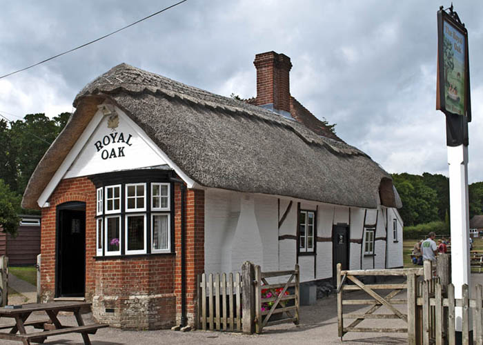 new forest pubs